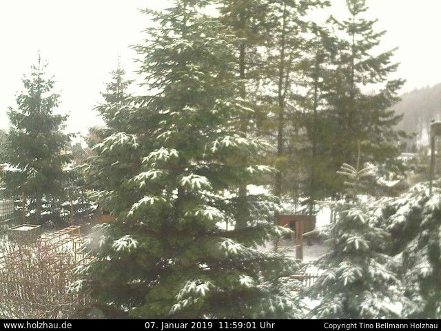Holzhau Webcam Skilift Schneehöhe 16.02.2016