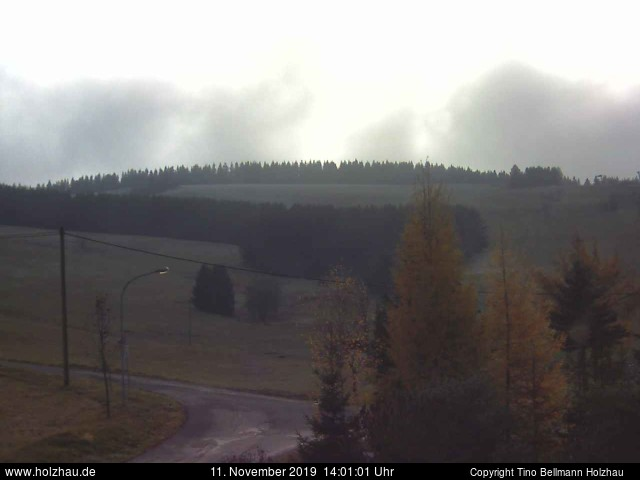 Holzhau Webcam 11.11.2019